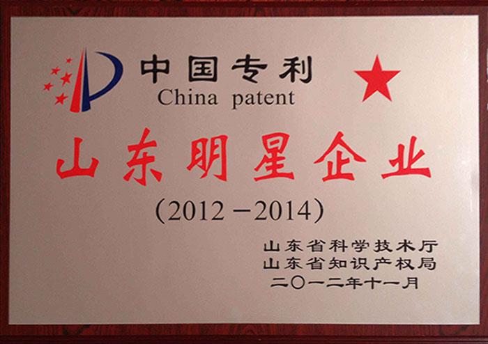 山东省专利明星企业